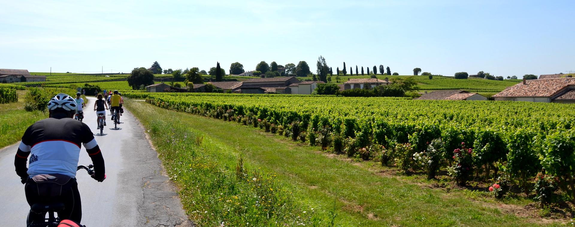 Image Le Vignoble de Bordeaux à vélo et bateau