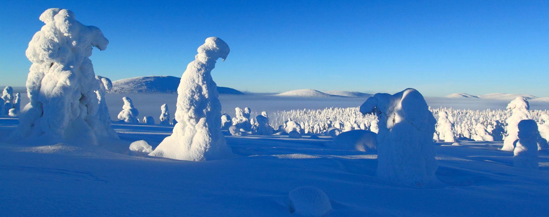 Voyage à la neige : Felltrek, la Laponie sauvage